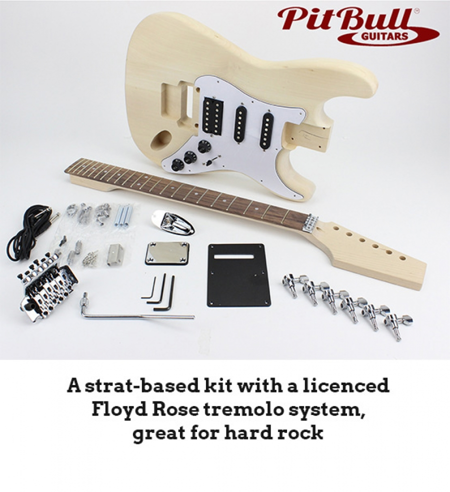 Build_an__Electric_Guitar_Course_Gallery0001.jpg